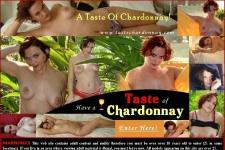 Taste Chardonnay